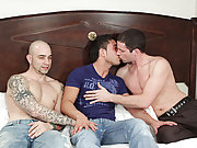 Kevin had no idea what he was in for until Johnny and Sam pulled their thick throbbing pieces of man-meat from their trousers free pics gay hunks