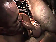 Butch obediently looks after his cock with his hot mouth and then has his butt munched on by our hairy daddy bears man naked at Alpha Male Fuckers